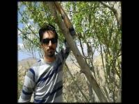 مهدی آتشی - تدریس فیزیک(المپیاد، دبیرستان و دانشگاه)