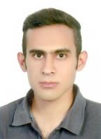 زهیر سلیمانی - ریاضیات، فیزیک و شیمی ابتدایی، راهنمایی و دبیرستان/ریاضیات و دروس تخصصی مهندسی مکانیک در مقطع کارشناسی و کارشناسی ارشد