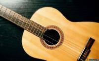 امیر جاوید - آموزش خصوصی گیتارکلاسیک.. گیتار پاپ و ساز دهنی.. تضمینی